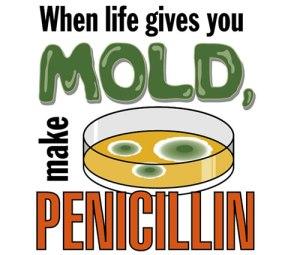 penicillin2